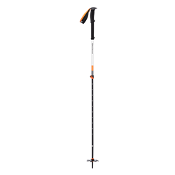 Black Diamond Expedition 2 Ski Poles